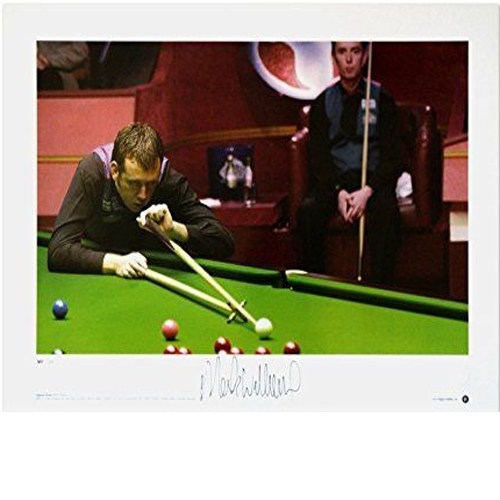 Mark Williams Signed Print